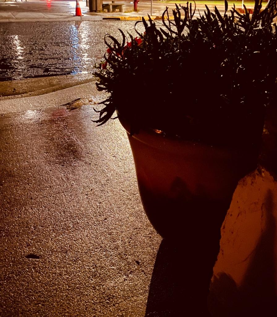 Shadows of West Main Street